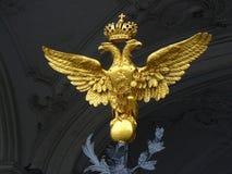 Złoty orzeł Obrazy Royalty Free