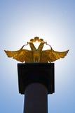 złoty orzeł Zdjęcia Royalty Free