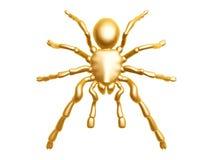 złoty pająk Fotografia Stock