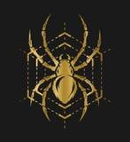 Złoty pająk i sieć Zdjęcia Royalty Free