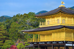 Złoty pawilon przy Kinkakuji świątynią w jesieni Obrazy Royalty Free