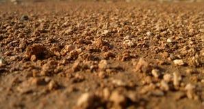 Złoty piasek Obrazy Royalty Free