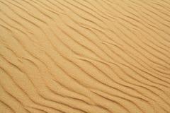 Złoty piasek na plaży 12 Zdjęcie Stock