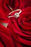 Złoty pierścionek na wzrastał Zdjęcie Royalty Free