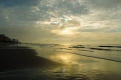 Złoty Plażowy słońce wzrost Obrazy Stock