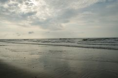 Złoty Plażowy słońce wzrost Fotografia Stock