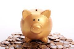 Złoty prosiątko bank z savings w monetach Brazylijski pieniądze Zdjęcia Stock