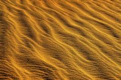 Złoty przepływ: Śmiertelna dolina Fotografia Stock
