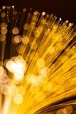 Złoty rozjarzony włókno Fotografia Stock