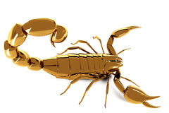 Złoty scorpio na białym tle Zdjęcia Royalty Free