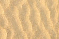 Złoty Seashore grzywny piaska tło Czochry tekstury Pastelowych kolorów słońca Falowy raca pusta kopii przestrzeń Tropikalny wakac Obrazy Royalty Free