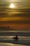 złoty surfingu Fotografia Royalty Free