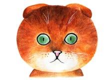 Złoty Szkocki kot beak dekoracyjnego latającego ilustracyjnego wizerunek swój papierowa kawałka dymówki akwarela Zdjęcia Stock