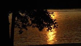 Złoty wieczór wodą zdjęcie wideo