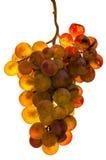 Złoty winogrono - odosobniony fotografia royalty free