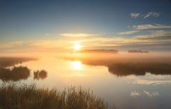 Złoty wschód słońca Zdjęcie Royalty Free