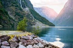 Złoty wschód słońca w górach, Gudvangen Norwegia z odbiciem w wodzie fjord Zdjęcia Royalty Free