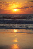 Złoty zmierzch nad plażą Obraz Royalty Free