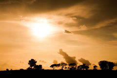 Złoty zmierzch nad szeroką sawanną Fotografia Royalty Free