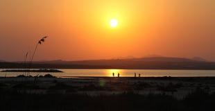 Złoty zmierzch w jeziorze saltworks Torrevieja zdjęcie stock