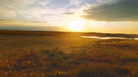 Złoty zmierzch w wiejskim polu Wieczór zmierzchu złoty słońce w chmurnym niebie zbiory