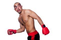 Zły bity bokser obraz royalty free