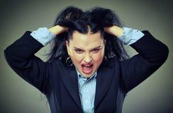 zły bizneswomanu krzyczeć Obraz Stock