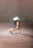 zły pogoda zdjęcie royalty free