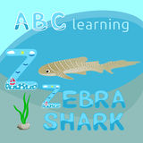 Z är tecknad film för djur för havet för vektorn för för sebrahajbokstav Z uppercase för stilsorten för tigern för hajen eller se Arkivbilder