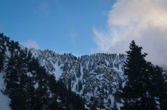Z śniegiem zima krajobraz fotografia royalty free