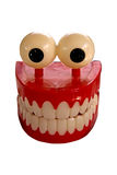zęby Zdjęcie Stock