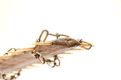 złapany ryba saw drut Zdjęcia Stock