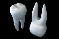 ząb Obrazy Stock