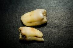 Ząb Po ekstrakci Zdjęcie Royalty Free