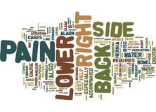 Z Back Pain Lower Right Side Text Background Word Cloud Concept Royalty Free Stock Photo