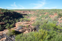 Z-bend. Red sandstone cliffs with lush native flora at the Z-bend gorge in Kalbarri National Park under a clear blue sky royalty free stock photos