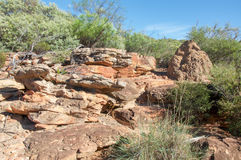 Z-Bend: Sandstone and Termite Mound. Z-Bend landscape in Kalbarri National Park with termite mound, native flora and sandstone rock formations under clear blue Stock Images