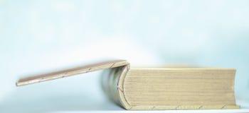 z bliska gęsty stary otwiera książkę Fotografia z kopii przestrzenią obraz royalty free