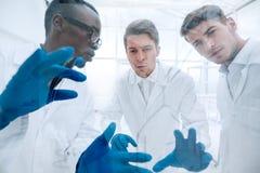 z bliska grupa mikrobiolodzy dyskutuje nowych pomysły obrazy royalty free