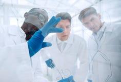 z bliska grupa mikrobiolodzy dyskutuje nowych pomysły zdjęcia royalty free
