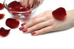 Z czerwonym gwoździa manicure'em piękna ręka Zdjęcie Royalty Free