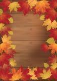 Z czerwonymi liść jesień tło Zdjęcia Royalty Free