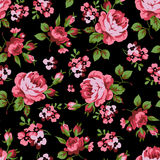 Z czerwonymi różami bezszwowy kwiecisty wzór Zdjęcie Stock