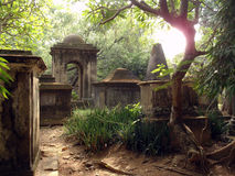 Z drzewami stary cmentarz Obraz Royalty Free