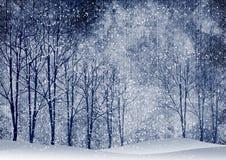 Z drzewami zima krajobraz Zdjęcie Royalty Free