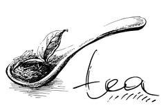 Z Herbacianymi Liść drewniana Łyżka royalty ilustracja