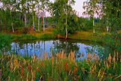Z jeziorem jesień krajobraz Zdjęcia Royalty Free