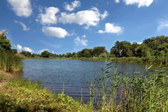 Z jeziorem lato krajobraz Fotografia Royalty Free