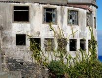 Z kaktusami przerastający chorobliwy dom przy morzem fotografia royalty free