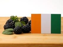 Z kości słoniowej wybrzeża flaga na drewnianym panelu z czernicami odizolowywać dalej zdjęcie stock